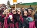 Bilder vom Umzug in Scheidegg am 19.Februar_28